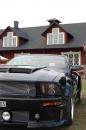 Backamo Classic Motor 13 av 114