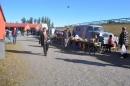 BCCC Veteranmarknad Tingsryd Travet 11 av 40