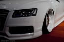Bilsport Performance & Custom Motor Show 14 av 51